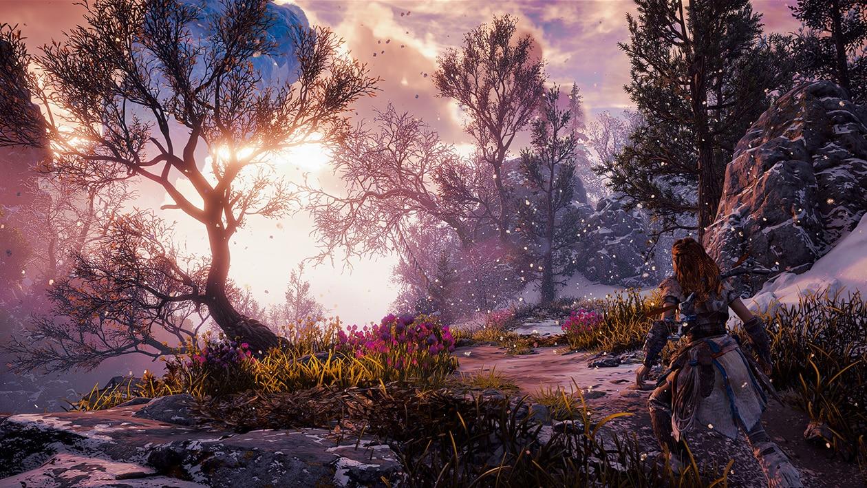 Foto: Guerrilla Games/Sony Interactive Entertainment / Reprodução: Google