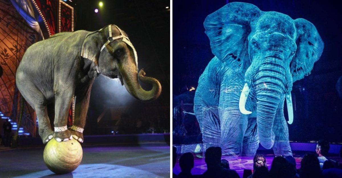 Adaptação de um circo alemão