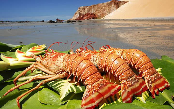 Foto: Governo do Estado do Ceará