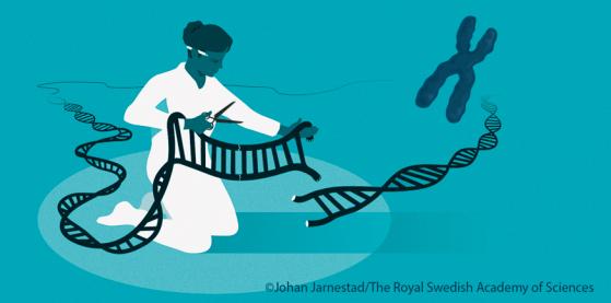 Johan Jarnestad/The Royal Swedish Academy of Sciences