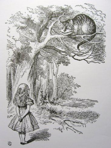 Reprodução/Google: Alice e o Gato