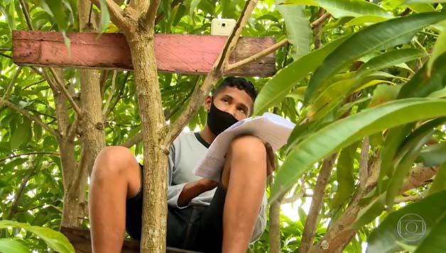 O caso do jovem Artur Mesquita, de 15 anos, repercutiu por todo o país. Enquanto aluno do ensino médio, a única forma que achou de se conectar às aulas online este ano durante a pandemia foi subindo no alto de uma árvore. (Foto: Google/Reprodução)