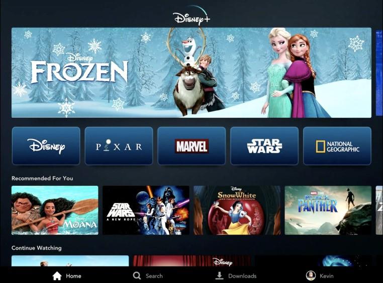 (Interface do Disney Plus. Reprodução: Quarta Parede POP)