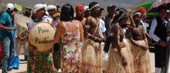Saúde Indígena e a Covid-19 em Pernambuco