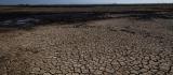 Queimadas no Pantanal já consumiram mais de 10% do bioma apenas em 2020