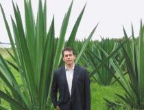 Material produzido a partir de planta surge como alternativa sustentável ao couro animal