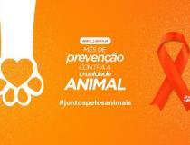 Abril laranja | Mês de conscientização e combate à crueldade aos animais