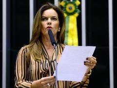 Deputada Iracema Portella propõe anulação da Lei da Alienação Parental