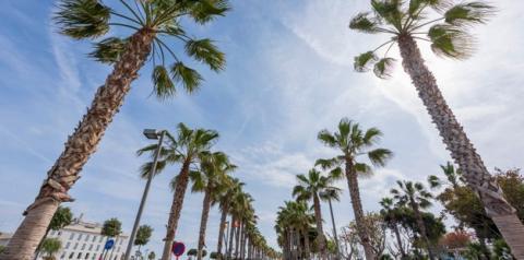 Beverly Hills: seis lugares indispensáveis na viagem