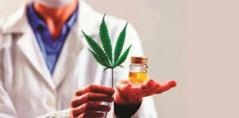 Laboratório em Belo Horizonte inicia a fabricação de produtos à base de cannabis