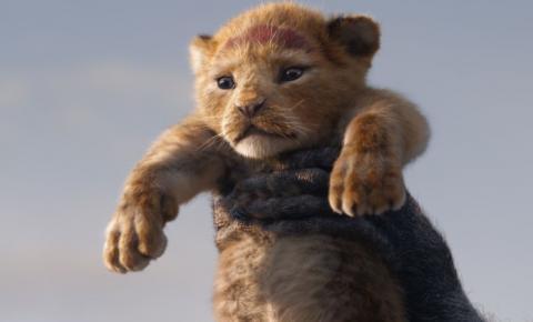 O Rei Leão: As 7 Principais Diferenças Entre O Live-Action e a Animação