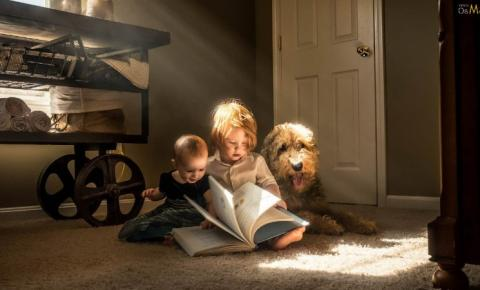 A leitura como terapia para vida e a mente na construção do intelecto