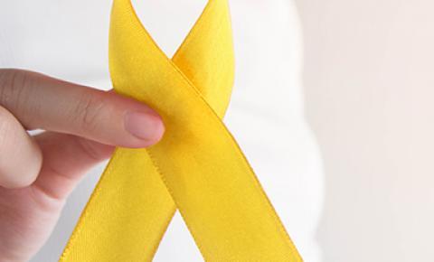 Política de prevenção ao suicídio aguarda aprovação do presidente da República
