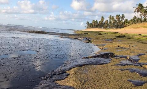 10 meses após o desastre ambiental, fragmentos de óleo voltam a aparecer nas praias do nordeste