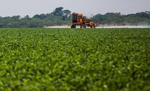 Anvisa libera edital para coleta de dados de alimentos contaminantes