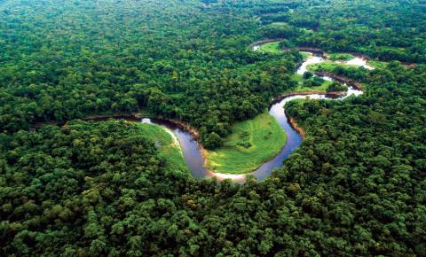 Polos Tecnológicos: uma alternativa para exploração sustentável da Amazônia