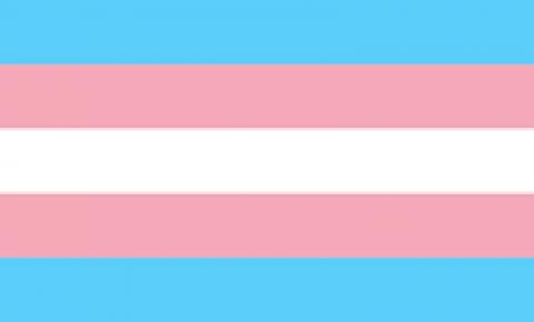 Marília Mendonça tem discurso transfóbico em live