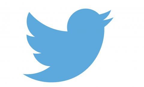Twitter lança ferramenta em combate à violência doméstica