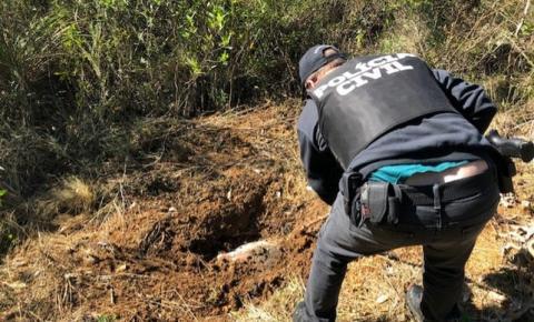 Cemitério clandestino é encontrado em Curitiba