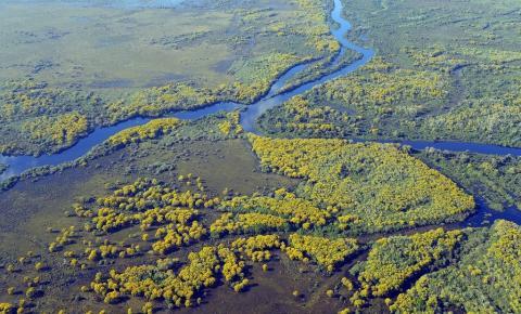 Ecoturismo no Pantanal: atividade prevalece apesar de dificuldades