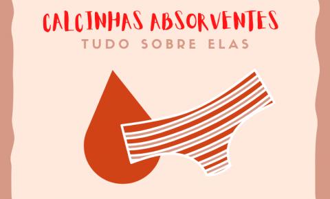 Calcinha absorvente é opção sustentável, mas não é acessível à toda população brasileira