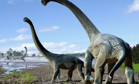 Pesquisadores encontram fóssil de Titanossauro que pode ser o mais antigo já descoberto