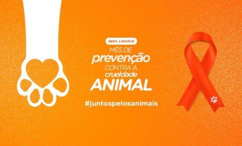 Abril laranja   Mês de conscientização e combate à crueldade aos animais