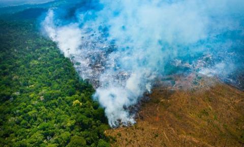O STF  debate a crise ambiental na Amazônia