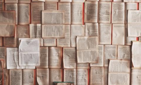 Fundação do Livro e Leitura de Ribeirão Preto passará por mudanças