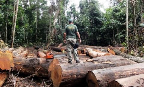 O Aquecimento Global no Brasil, provocará queda na produção agrícola e desequilíbrio de CO²