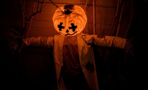 Cinco livros assustadores para ler nesse Halloween